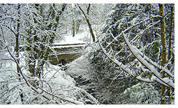 Winter scenes at Rock Park in Llandrindod Wells, mid Wales.